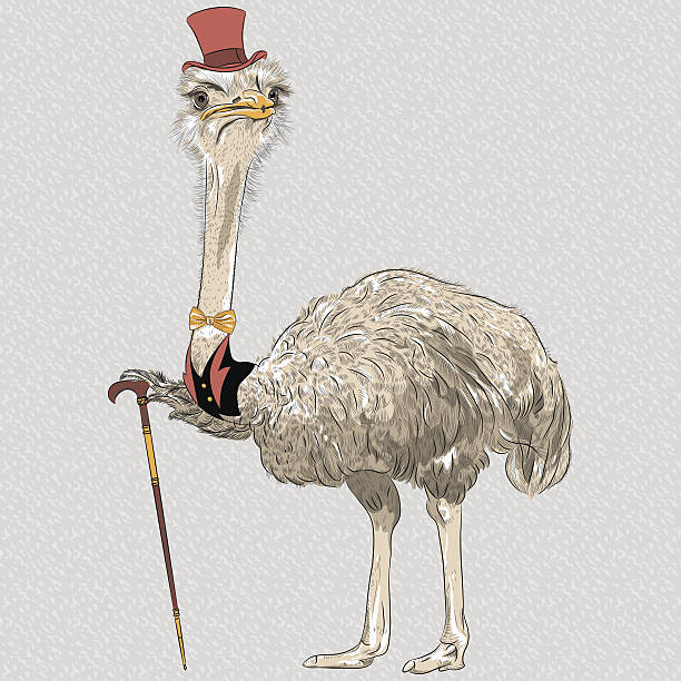 Vecteur drôles hipster autruche oiseau - Illustration vectorielle