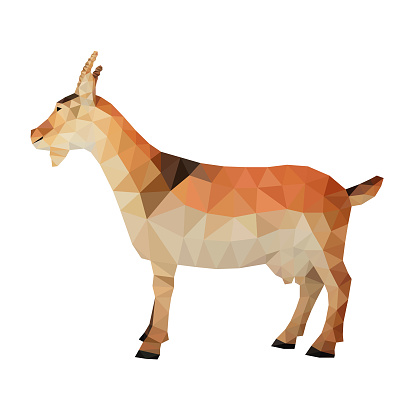 Vector Goat Isolated On White Background