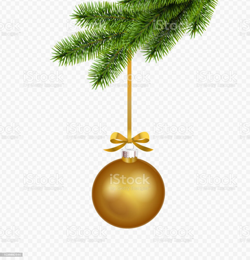 Christmas Transparent Background.Vector Gold Christmas Decoration With Pine Branch Isolated On Transparent Background Stock Illustration Download Image Now