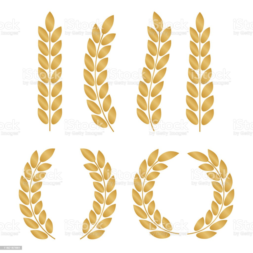 Vector gold laurel. Laurel wreath award and golden ribbon. Award...