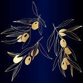 Vector Golden olive branch with golden leaves. Plant botanical garden floral foliage. Golden engraved ink art. Isolated olive illustration element on dark blue background.