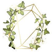 Vector Gooseberry branch. Green leaf. Plant botanical garden floral foliage. Frame golden crystal. Geometric polygon crystal polyhedron mosaic shape. Engraved ink art.