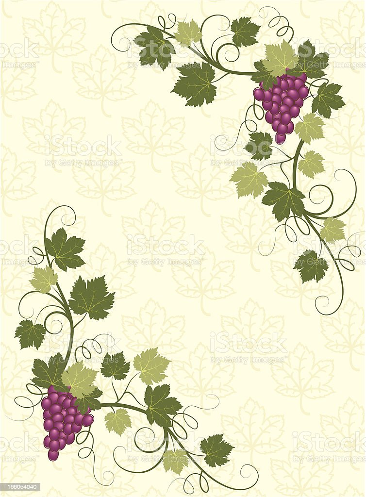 Vector grape background . royalty-free stock vector art