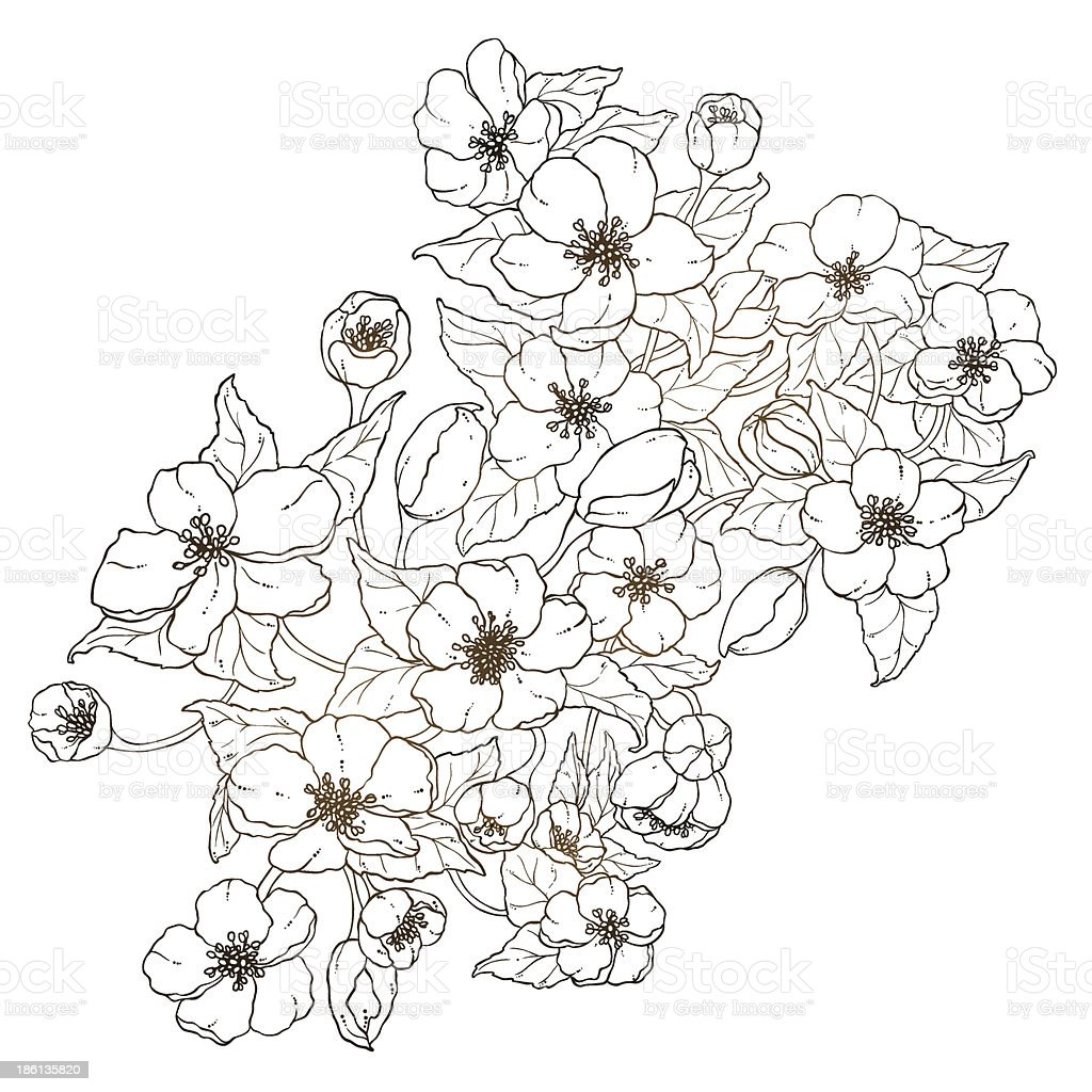Vector graphic floral card isolated on the white background. royalty-free stock vector art