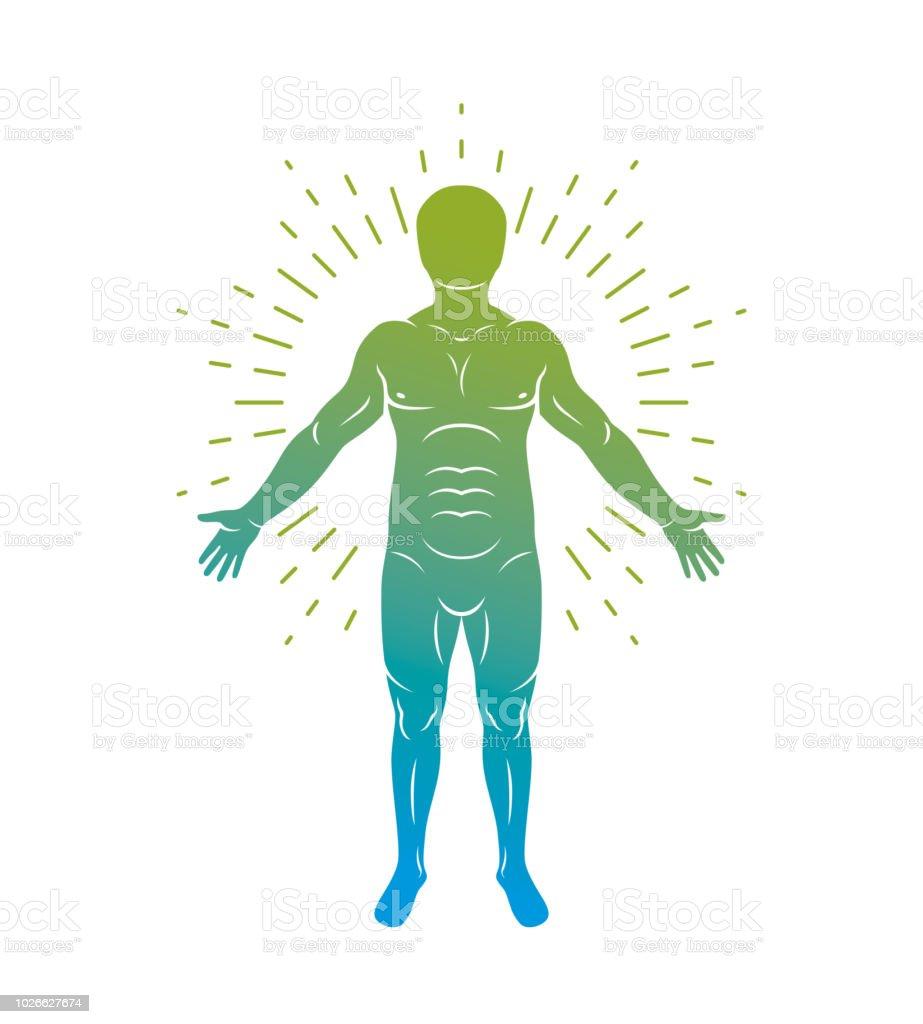 Ilustración de Ilustración Gráfica De Vector Del Ser Humano Muscular ...