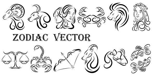 Vector graphic illustration of zodiac signs. All zodiac signs in line art concept: Aries; Taurus; Gemini; Cancer; Leo; Virgo; Libra; Scorpio; Sagittarius; Capricorn; Aquarius and Pisces.
