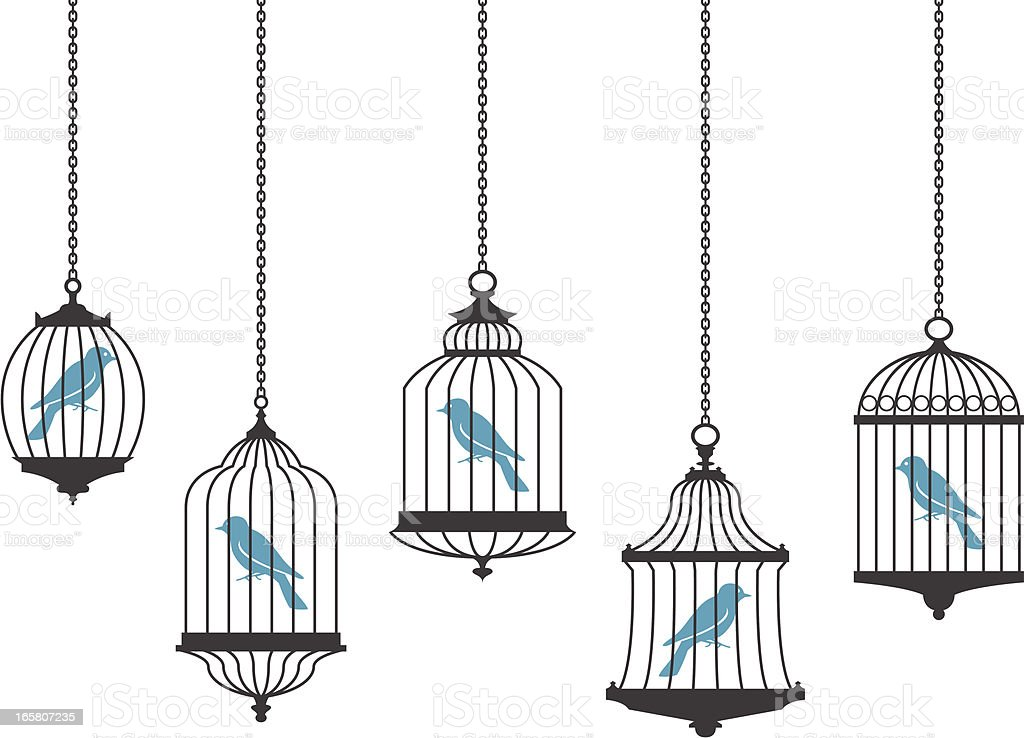 Vector graphics of birds in hanging cages vector art illustration