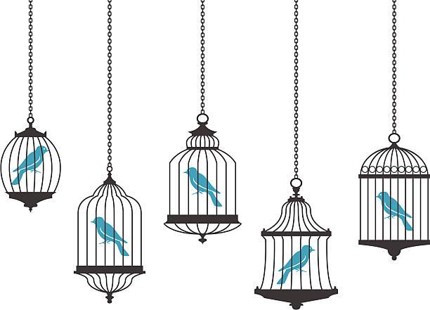 stockillustraties, clipart, cartoons en iconen met vector graphics of birds in hanging cages - kooi