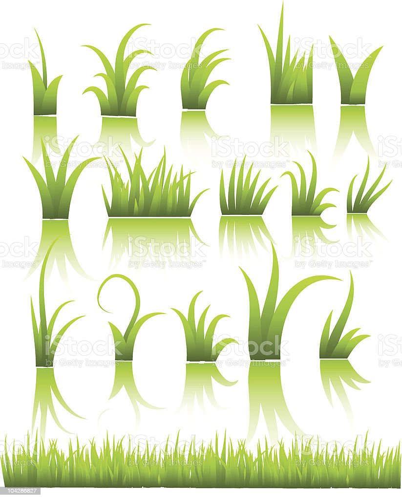 vector grass vector art illustration