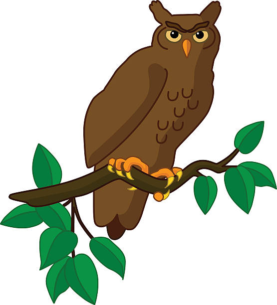 vector great horned owl perched on tree branch in color - great horned owl stock illustrations, clip art, cartoons, & icons