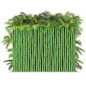 Vector Green Bamboo Fence with Palm