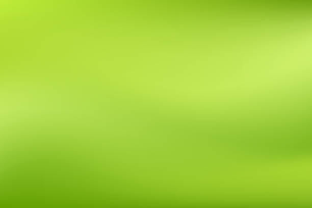 vector green blurred gradient style background. abstract smooth colorful illustration, social media wallpaper - охрана окружающей среды stock illustrations