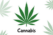 Vector green Cannabis leaf icon isolated on white background. Also known as marijuana is a psychoactive drug from the Cannabis plant used for medical or recreational purposes.