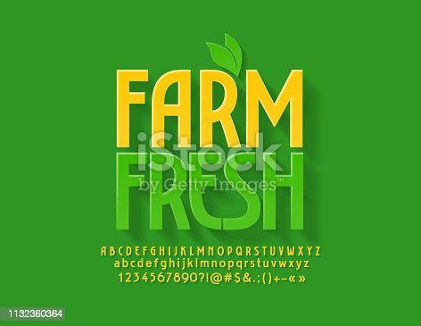 istock Vector green emblem Farm Fresh with decorative leaves. Bright Alphabet Letters, Numbers and Symbols 1132360364