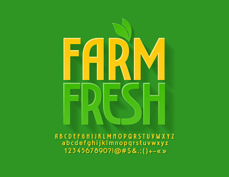 Vector green emblem Farm Fresh with decorative leaves. Bright Alphabet Letters, Numbers and Symbols