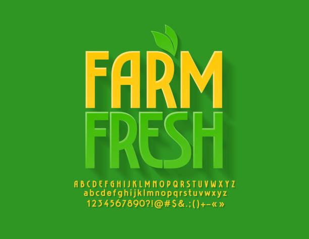 向量綠色會徽農場新鮮與裝飾葉。明亮的字母、數位和符號 - 清新 幅插畫檔、美工圖案、卡通及圖標