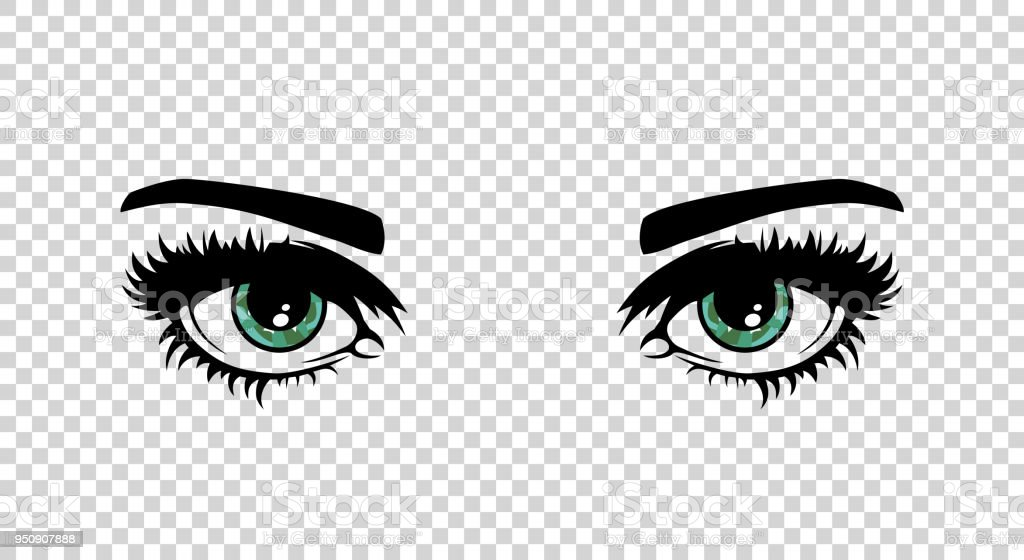 Vector green female eyes with long lashes and make up. Beautiful girls vector art illustration