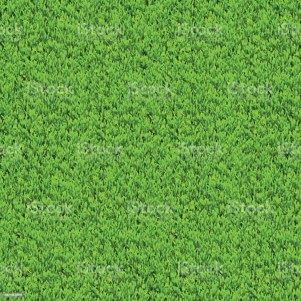 Vector green grass background. vector art illustration