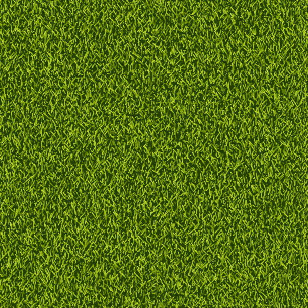 Vector green grass lawn seamless texture. Spring or summer nature background. Field or meadow realistic illustration. Vector green grass lawn seamless texture. Abstract spring or summer nature background. Field or meadow realistic illustration. turf stock illustrations