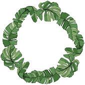 Vector Green leaf plant botanical garden floral foliage. Engraved ink art. Exotic tropical hawaiian summer. Palm beach tree leaves jungle botanical. Frame border ornament square.