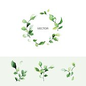 Vector green leaf wreath with place for text and set of branches with leaves in watercolor style. Beautiful hand drawn elements for save the date card, wedding invitation and greeting cards.