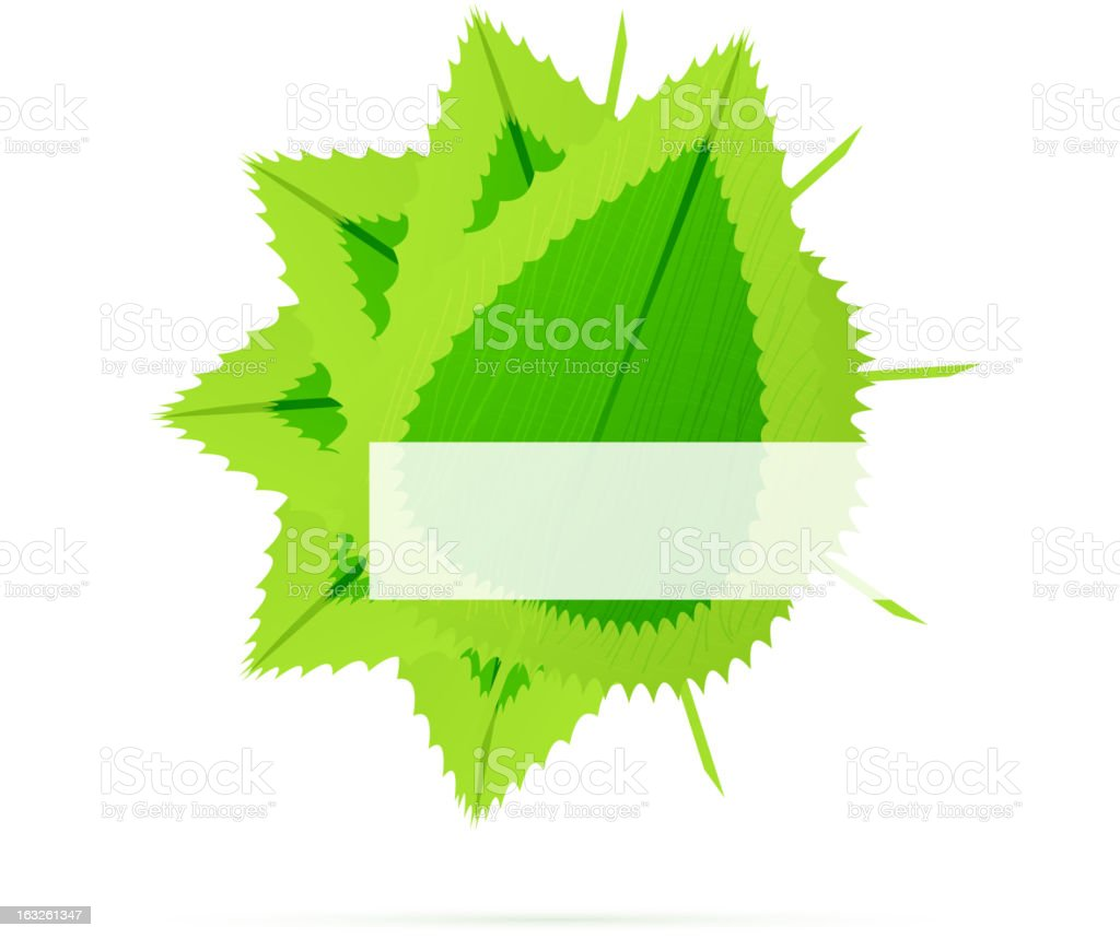 Vector green leaves background royalty-free stock vector art