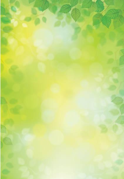 Vector green leaves background. Vector green leaves border on green bokeh background. springtime stock illustrations