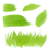 Vector green watercolor natural, organic, bio, eco labels and shapes, strokes, grass on white background. Hand drawn stains set.