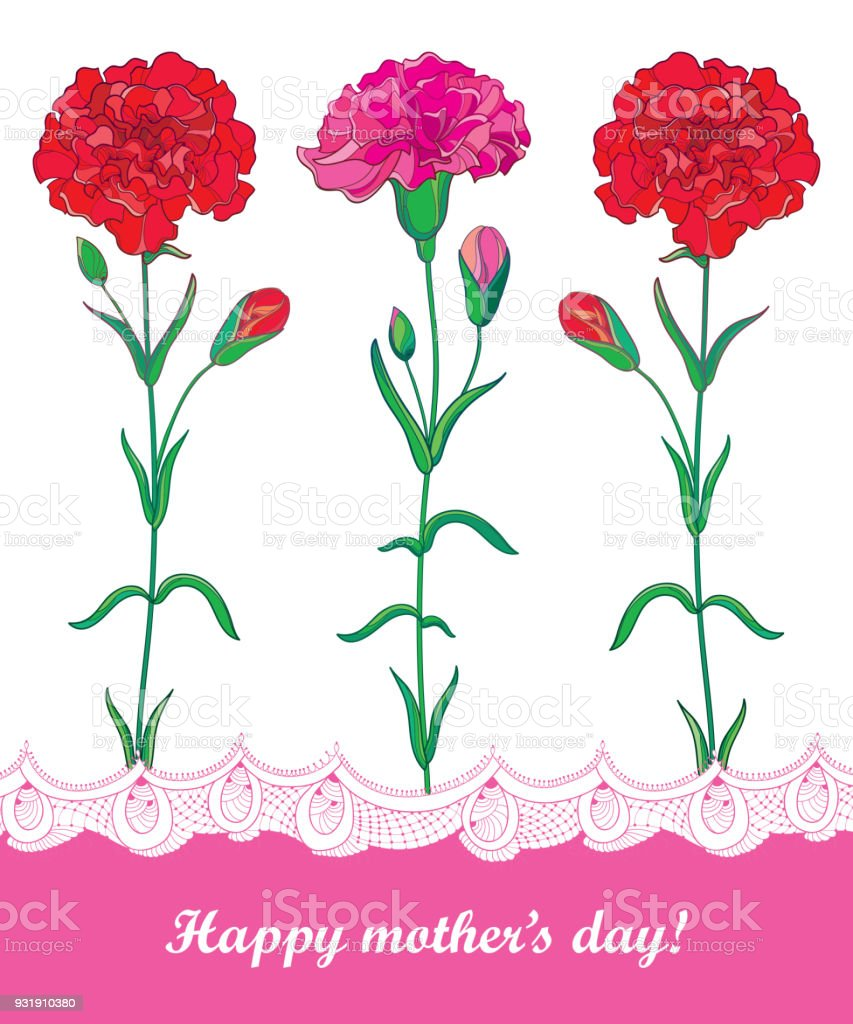 Vector Greeting Card For Mother Day With Three Red Carnation Or