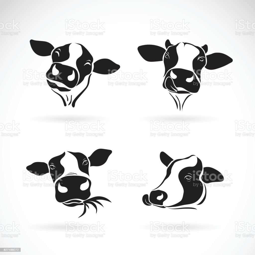 Vector group of a cow head design on white background. Farm Animal. vector art illustration