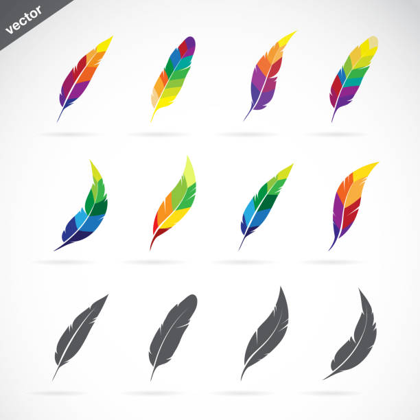 vector group of feathers icon design on white background. easy editable layered vector illustration. - pióro przyrząd do pisania stock illustrations