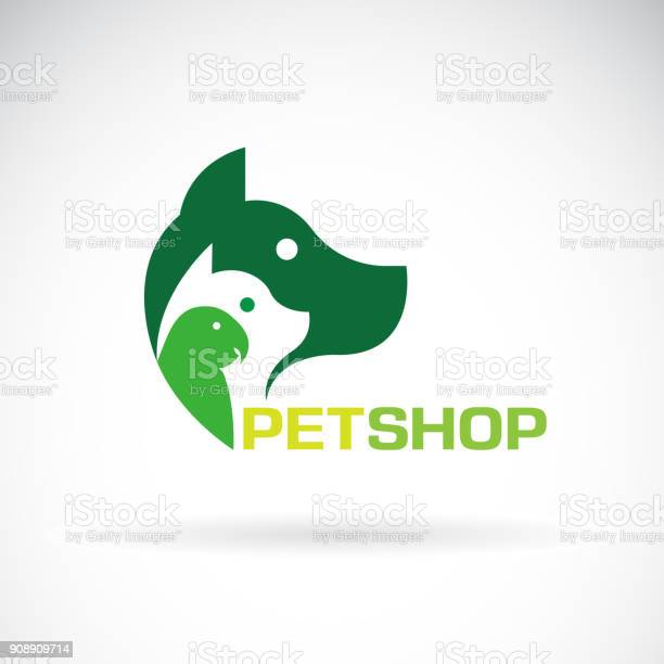 Vector group of pets dog cat parrot on white background beautiful pet vector id908909714?b=1&k=6&m=908909714&s=612x612&h= rpkfi3mk3mu 0n  5 mnszsum8msnhtbwriq7atph4=