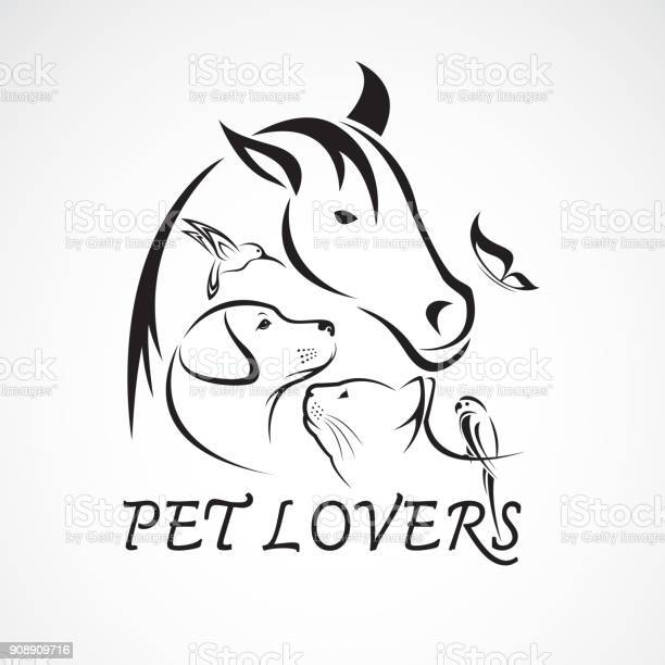 Vector group of pets horse dog cat bird butterfly rabbit isolated on vector id908909716?b=1&k=6&m=908909716&s=612x612&h=ao8flqtjcyifg2c5fswctnrv2ld1ptbugq m0v8thmo=
