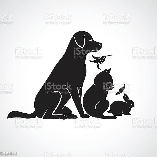 Vector group of pets vector id486721686?b=1&k=6&m=486721686&s=612x612&h=mdss79kswtnhpzswmf0k7hjgg1nt0i0isaawodgtuq8=