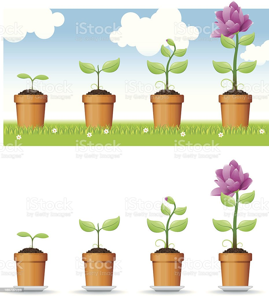 Vector, Growing plant vector art illustration