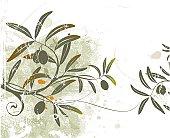 Vector Grunge Floral Background - Olives