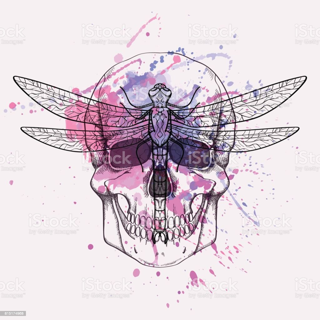 Vector Grunge Illustration Of Human Skull And Dragonfly With ...