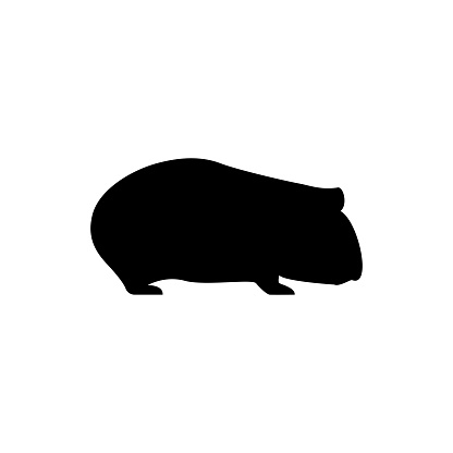 Vector guinea pig silhouette view side for retro icons, emblems, badges, labels template vintage design element. Isolated on white background