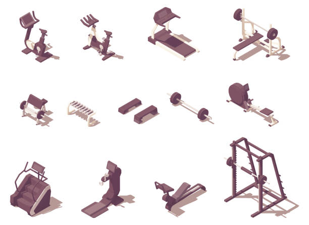 Vector gym exercise machines Vector isometric fitness or gym exercise machines. Treadmill, rowing machine, dumbbells, exercise bike, cycle, step machine, barbell and weight bench, seated preacher curl, exercise machine stock illustrations