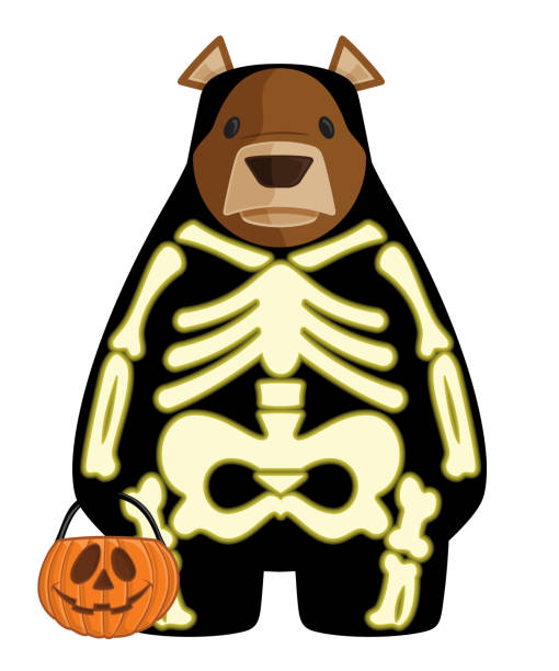 Vector Halloween Cartoon Bear Illustration in Glow in the Dark Skeleton Costume Holding a Trick or Treat Jack O'Lantern Bucket This is a vector cartoon bear illustration wearing his halloween skeleton costume and carrying a pumpkin candy bucket animal costume stock illustrations