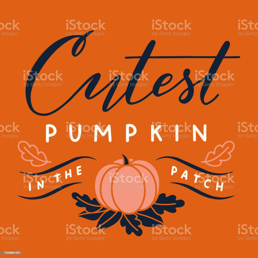 vector halloween print with cutest pumpkin in the patch lettering