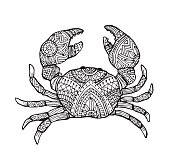 Vector hand draw of crab