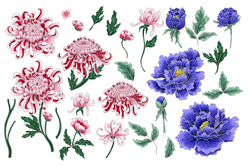 Vector hand draw seamless pattern of chrysanthemum and peonies. For dress design, print or other.