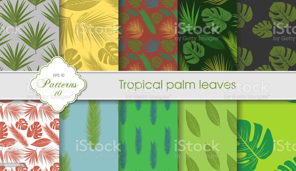 Vector hand drawing set of tropical backgrounds palm leaves samples vector hand drawing set of tropical backgrounds palm leaves samples postcards certificates m4hsunfo