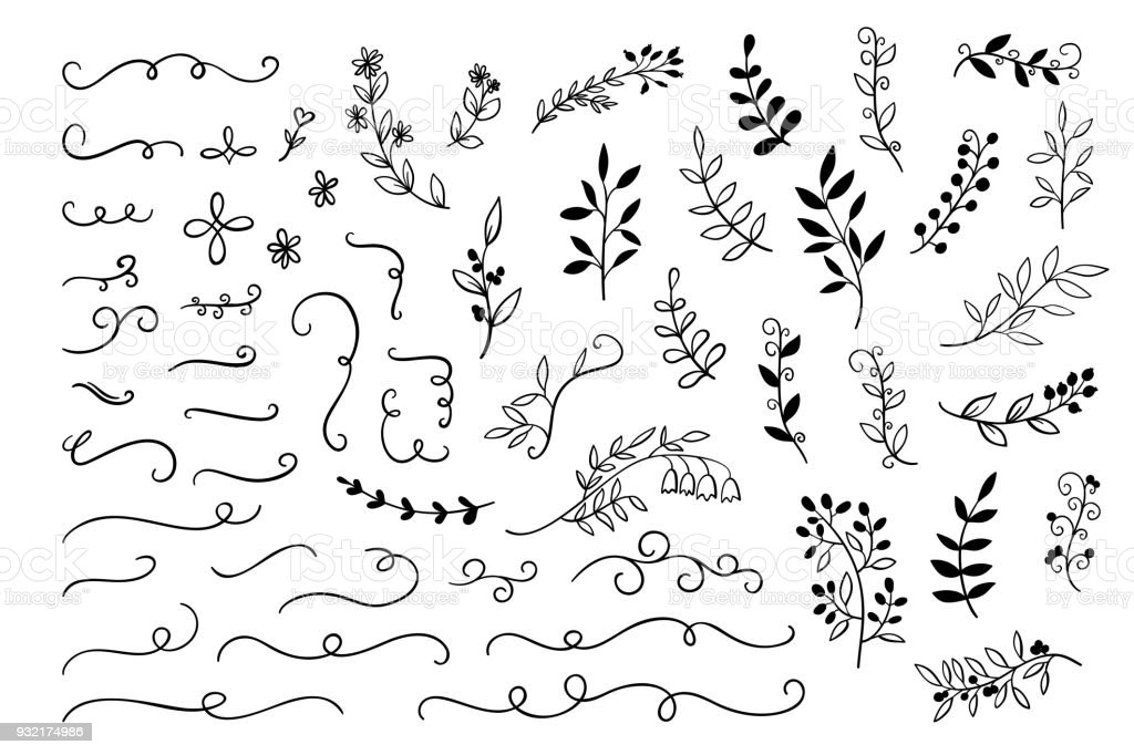Vector hand drawn branches dividers leaves decoration for wedding vector hand drawn branches dividers leaves decoration for wedding greetings cards sketch m4hsunfo