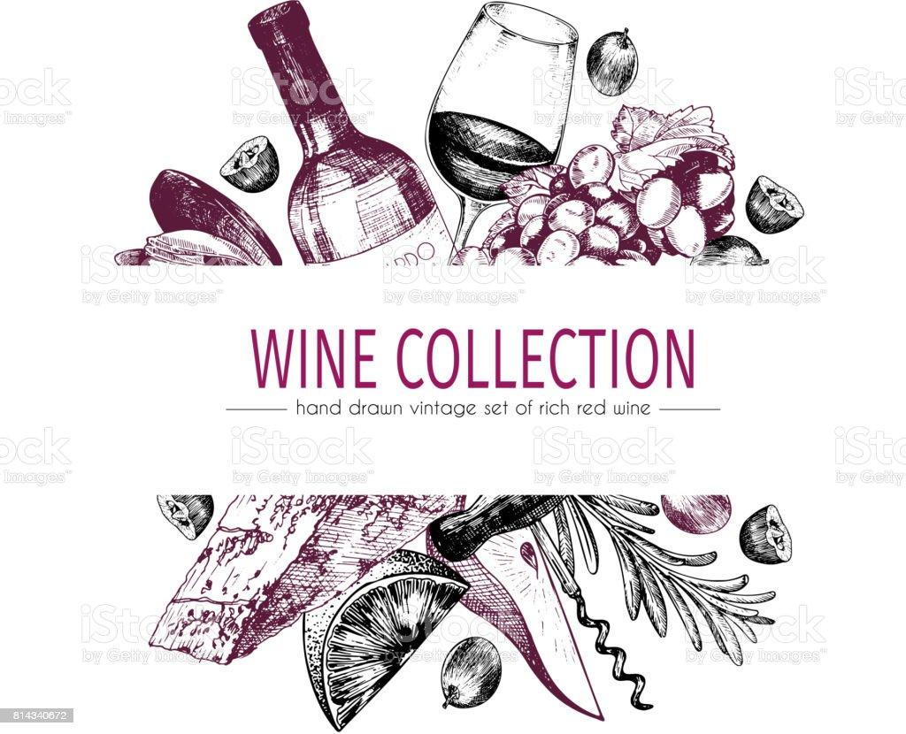 Main de vecteur dessiné illustration modèle couleur de vin et apéritifs. Bouteille, verre, corcksrew, fromage, fruits et cpices. - Illustration vectorielle