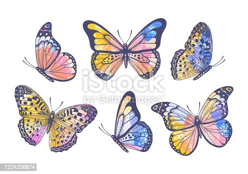 Vector vintage hand drawn colorful set with beautiful pastel watercolor butterflies isolated on white background