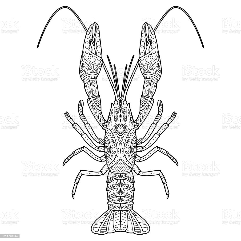 Vector Hand Drawn Crawfish Drawing For Coloring Book Stock