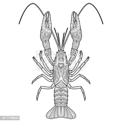 Vector Hand Drawn Crawfish Drawing For Coloring Book Stock Vector Art & More Images of Animal ...
