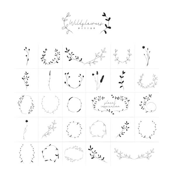 Vector Hand Drawn Floral Frames Wreaths Branches Vector Hand Drawn Doodle Floral Frames and Wreaths Collection, with Plants, Branches, Laurels, Flowers, Wildflowers. Design Elements Illustration. Logo Branding fragility stock illustrations